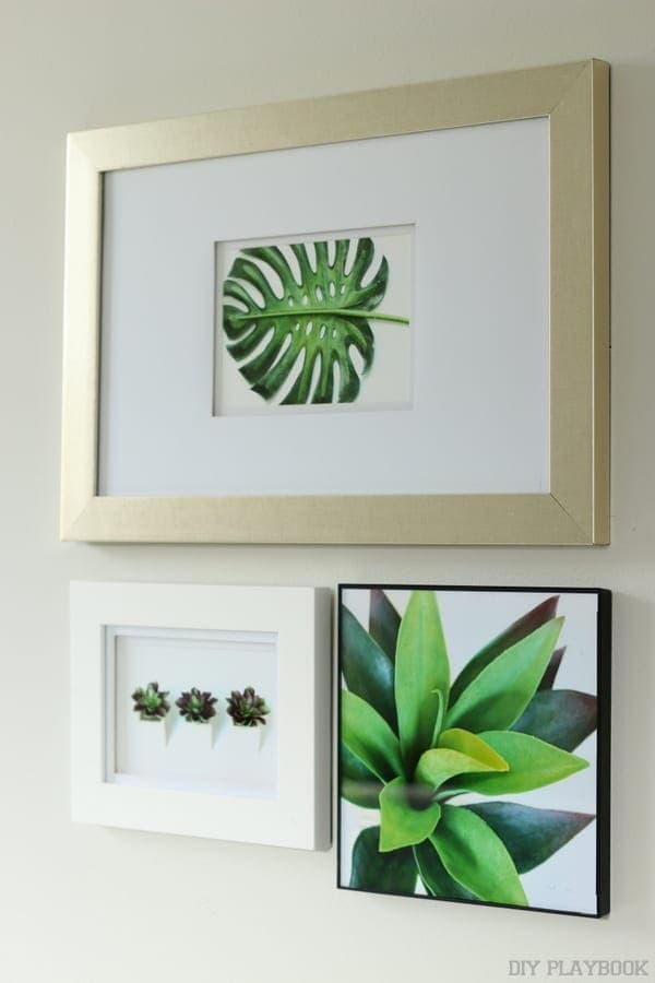 Framed prints on a gallery wall.