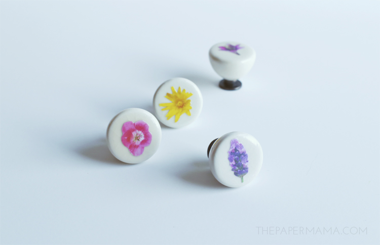 Floral Drawer Pull DIY's (with free printable)