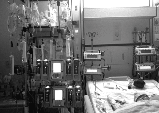 the Gift of Organ Donation