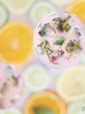 Herbal Ice Cubes & Fruit Herb Drink Pairings thumbnail