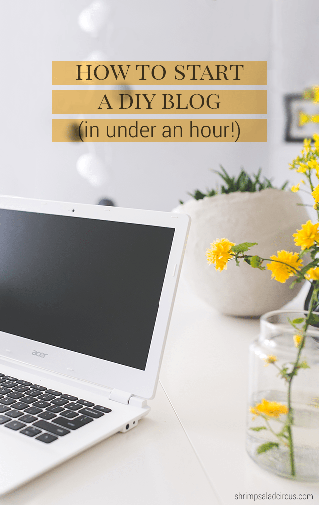 How to Start a DIY Blog in Under an Hour - Shrimp Salad Circus