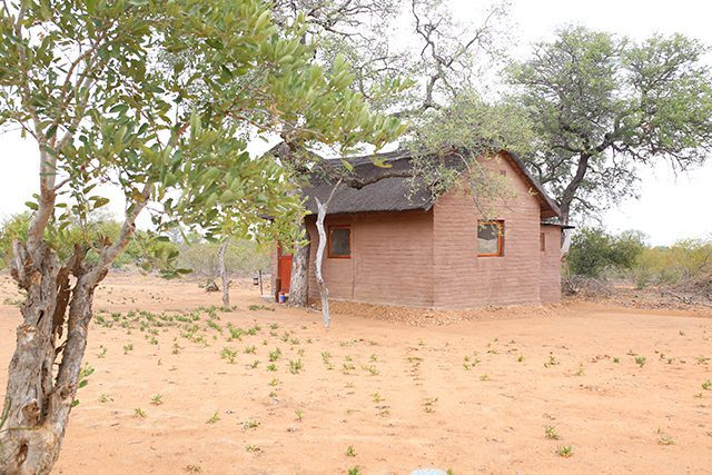 Safari at Kruger Travel Guide - Where to Stay - Africa on Foot Hut
