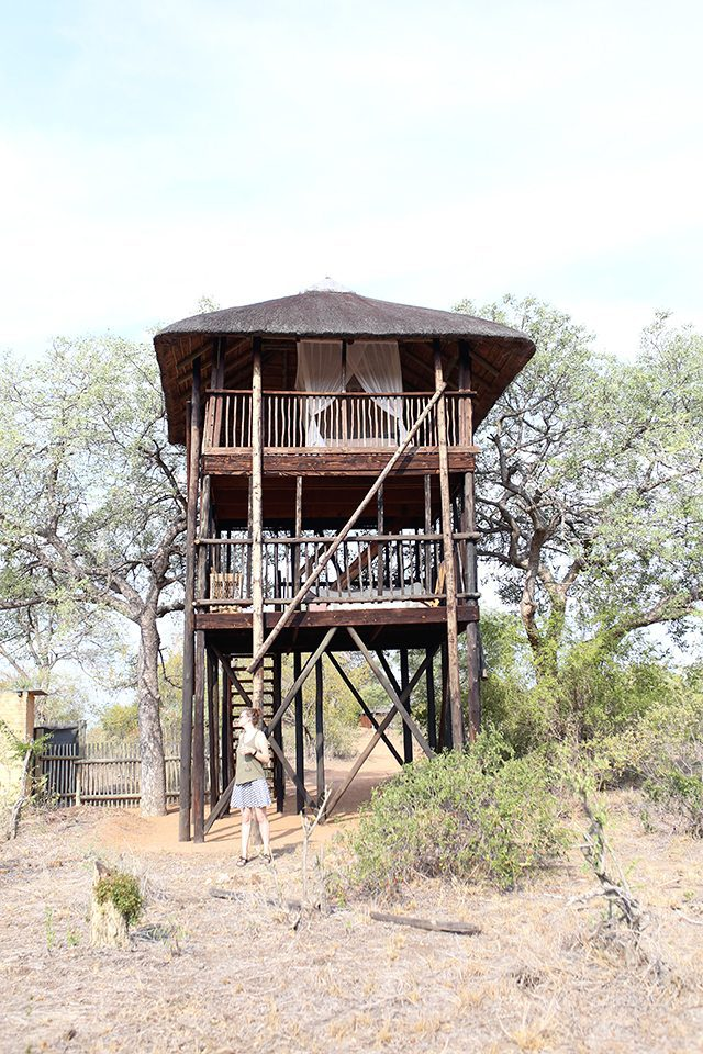 Safari at Kruger Travel Guide - Where to Stay - Africa on Foot Tree House