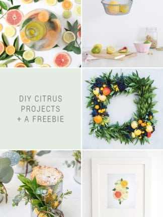 DIY Citrus Projects + Favorite Finds No. 89 thumbnail