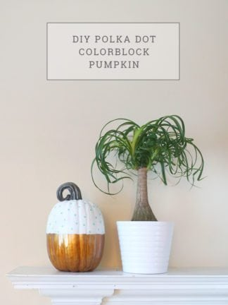 DIY Polka Dot Color Block Pumpkin thumbnail