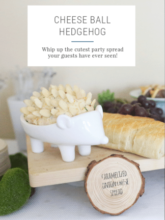 Cheese Ball Hedgehog Recipe thumbnail
