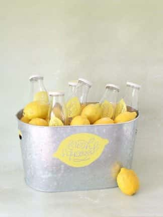 DIY Fresh-Squeezed Lemonade Summer Party Cooler + Free Cricut Template thumbnail